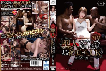 STAR-859 Kikugawa Mitsuba Black Megachi ● Screaming At The Po, Convulsions, Cum Shot Cum Heavy FUCK