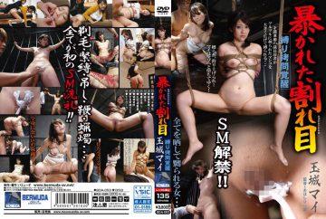 BDA-053 Tied Torture Awakening Revealed Crack Tamaki My