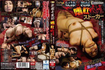 CMC-207 Slave Female Teacher Analing Meat Abuse Stalker Mirei Yokoyama