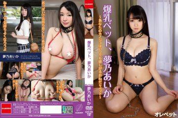 GASO-0065 Tits Pet, YumeNo Aika