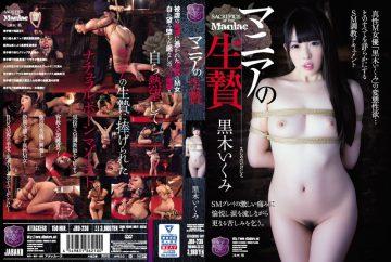 JBD-236 Mania's Sacrifice Kurogi Tsumami