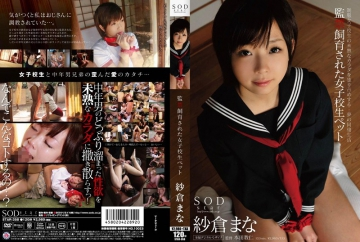 STAR-358 Sakura Mana school girls have been breeding pet confinement